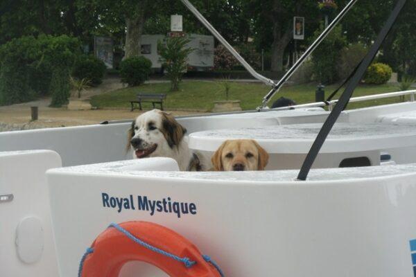 Hausboot mit Hund Italien