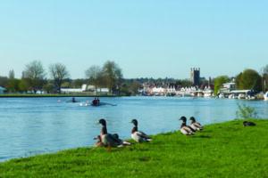 Urlaub in England mit dem Boot